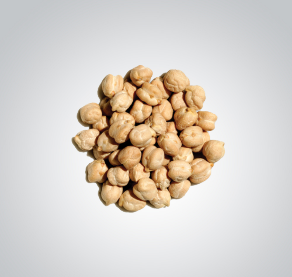Pulses - Chickpea