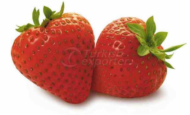 Concentré de purée de fraises