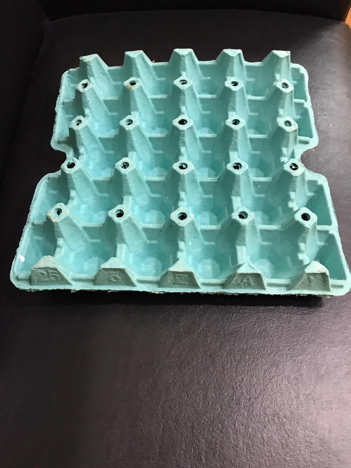 20lbs Green 20-Egg Tray