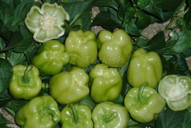 Natural Bioplasm-Pepper