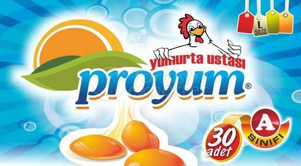 Yumurta L Proyum