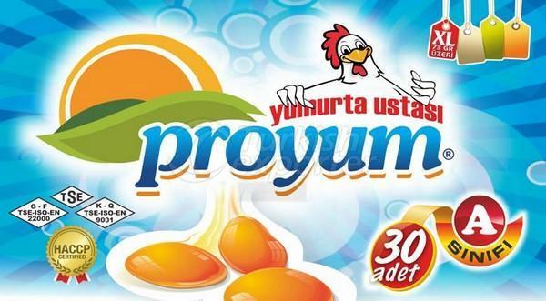 Egg XL Proyum