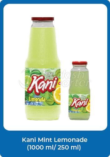 Kani Mint Lemonade