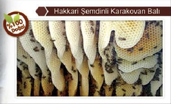 Karakovan Honey Hakkari Semdinli