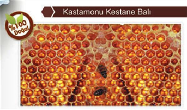 Chestnut Honey Kastamonu