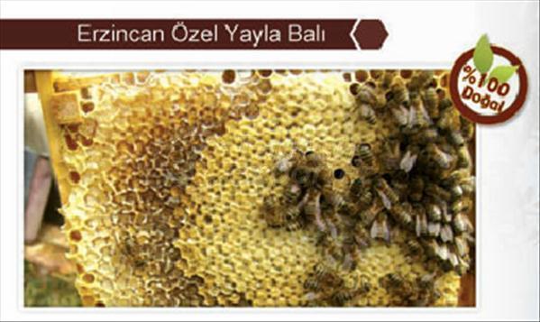 Special Plateau Honey Erzincan