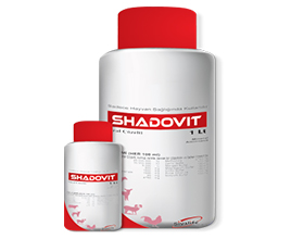 Shadovit