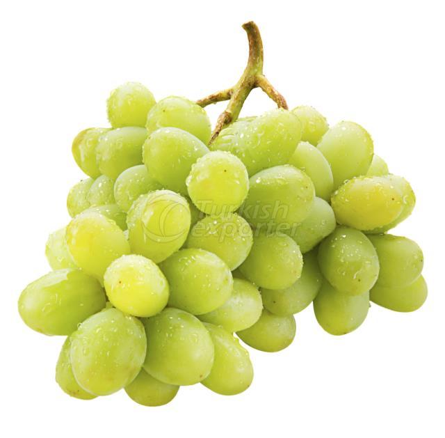 Frozen Grape