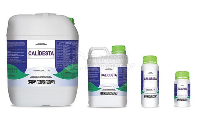 Calidesta