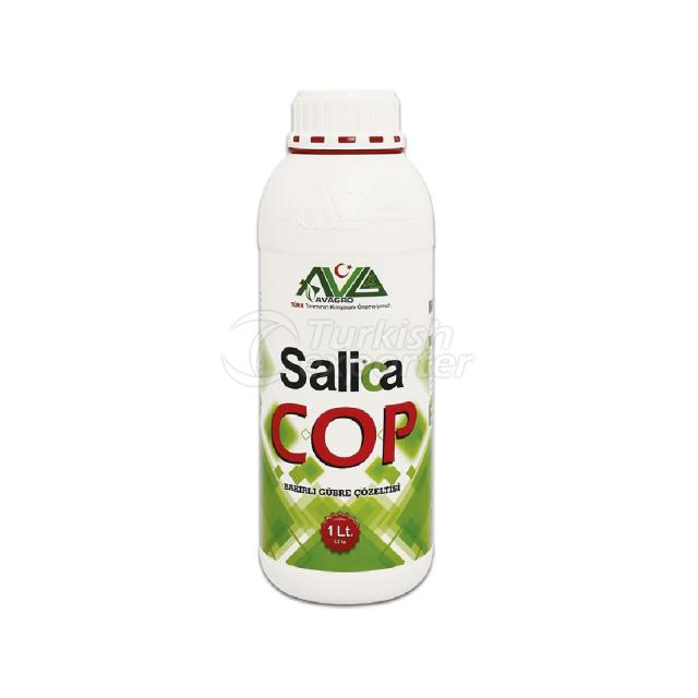 Salica Golpe