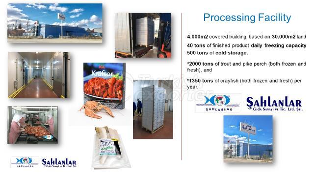 Processing Facility