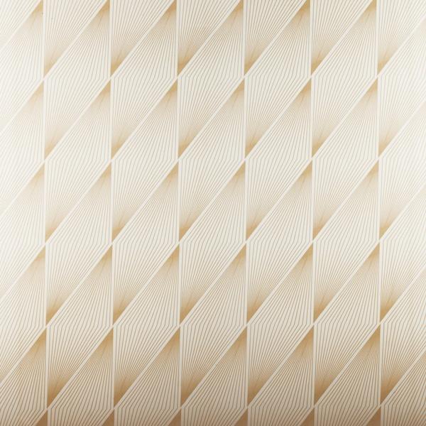 Asma Tavan Panelleri BAK02