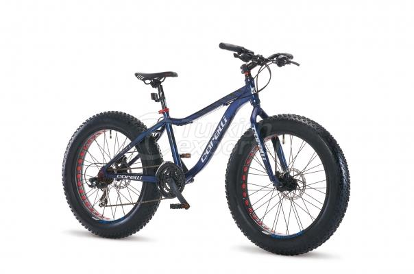 Bicycles – Fat Bike - Forte