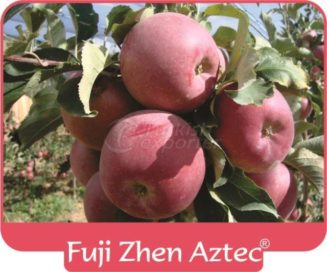 Яблоко Fuji Zhen Astec