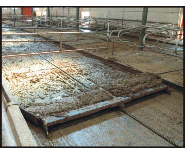 Fertilizer Scraper System