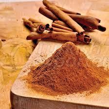 Cinnamon Condiments