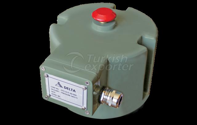 DTS 18-24 Pressure Safety Valves