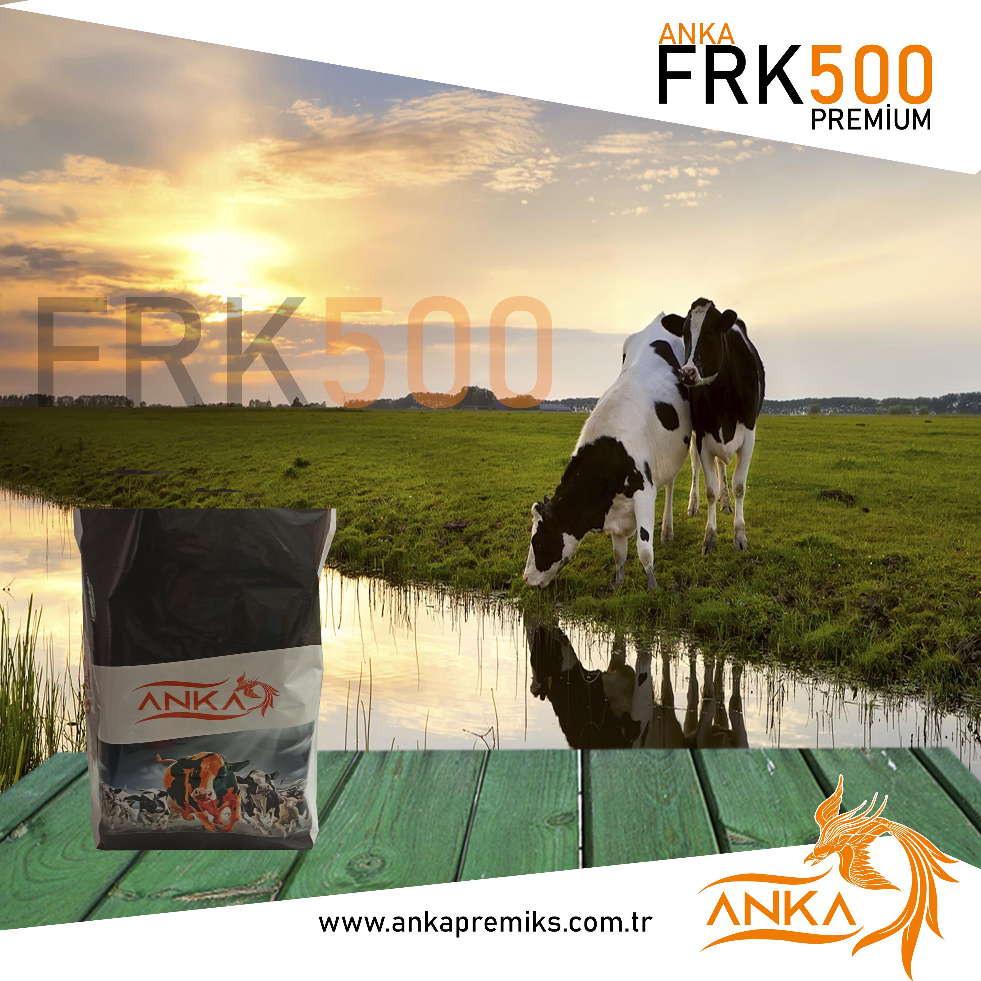 FRK500