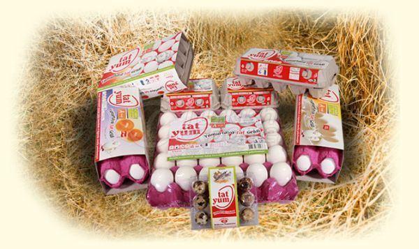 Tatyum Eggs