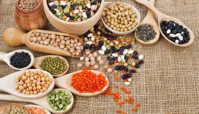 Frijoles: legumbres y granos
