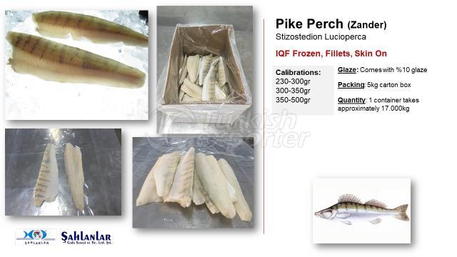 Pike Perch