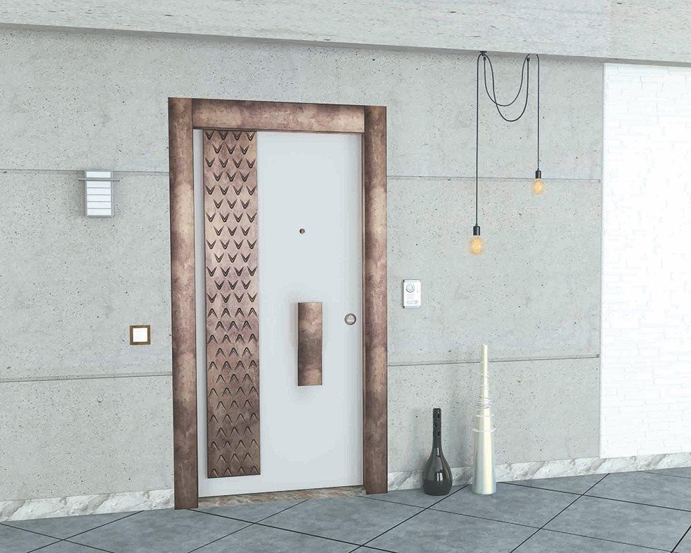Steel Doors Platinum Bird
