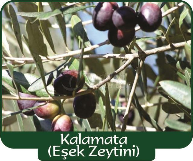 Оливки Kalamata