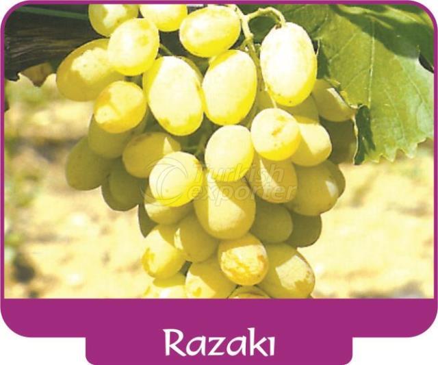 Виноград Разакы