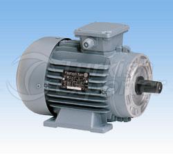Electric Motor Volt 3 Phase