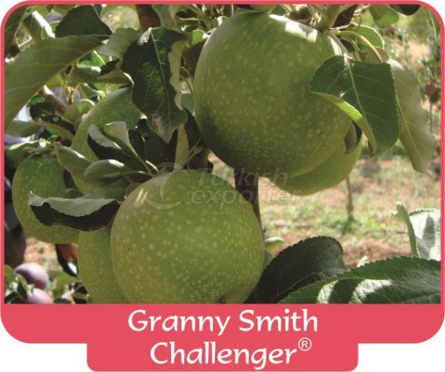 Яблоко Granny Smith Challenger