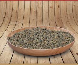 Chilban Seeds