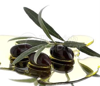 Olive Medium Size Gemlik