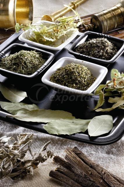 Sementes de óleo - especiarias e ervas
