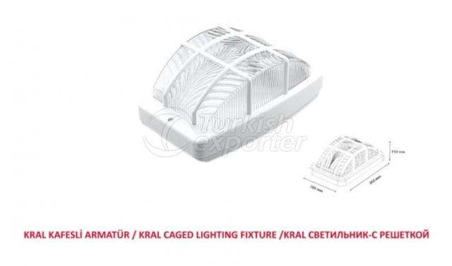 Caged Lighting Fixture