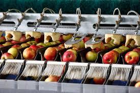 FOOD INDUSTRY MACHINE