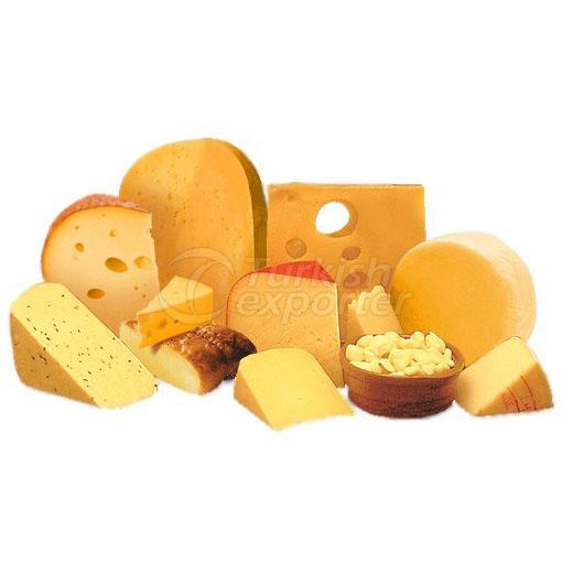 International Cheese Production Machinery