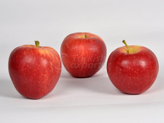 تفاح غالا