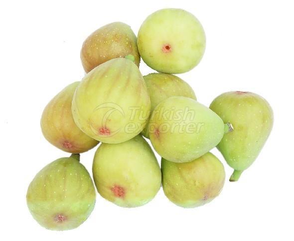 Frozen Fig