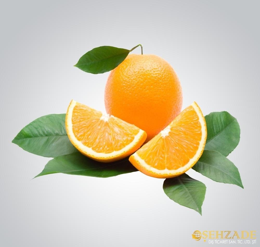 Fruits - Orange