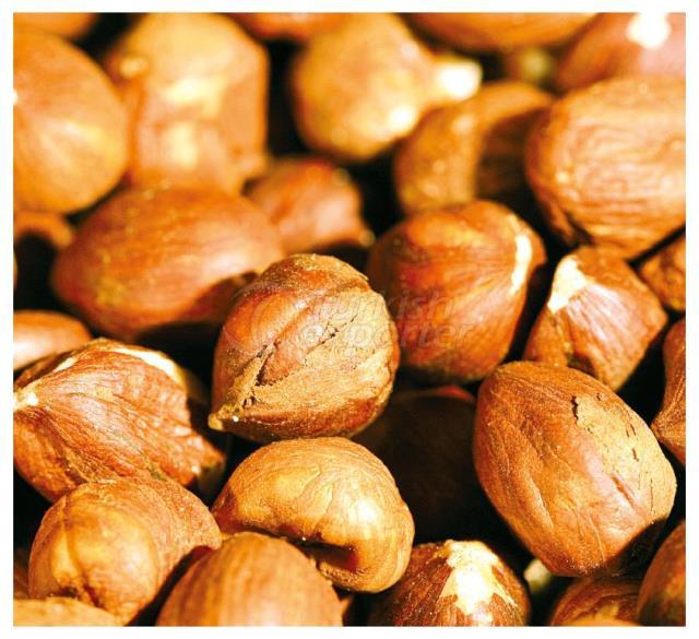 Hazelnut Kernels Natural