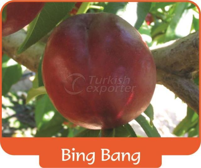 Нектарин Bing Bang