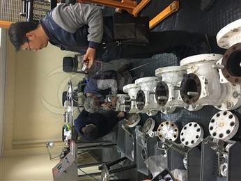 Reparación piloto de válvula segura
