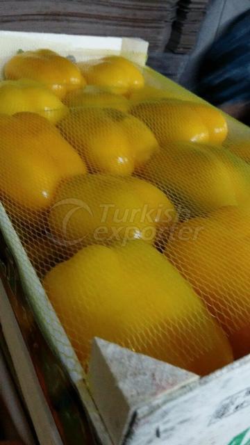 Sarı Biber