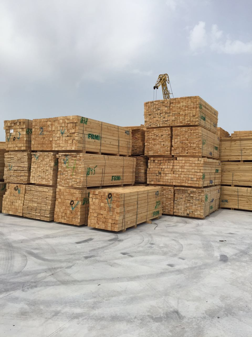 Timber 5064