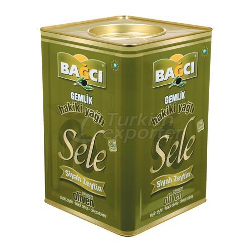 Black Olive Oil Cured