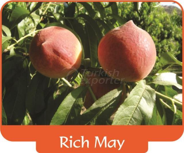 Персик Rich May
