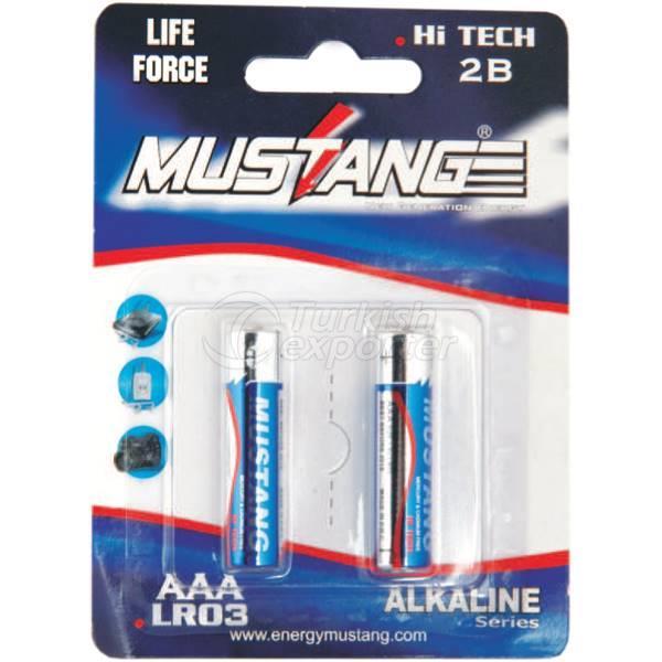 Alkaline Zinc and Steel Batteries KLR03