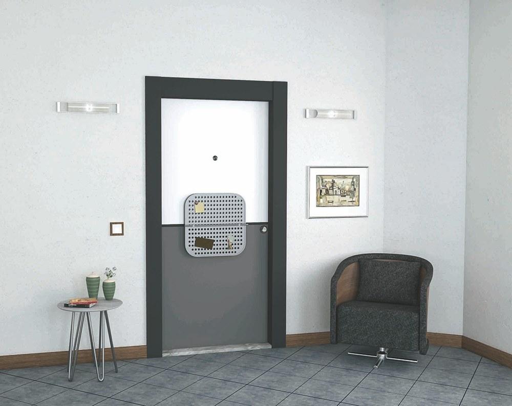 Steel Door Special Pixel