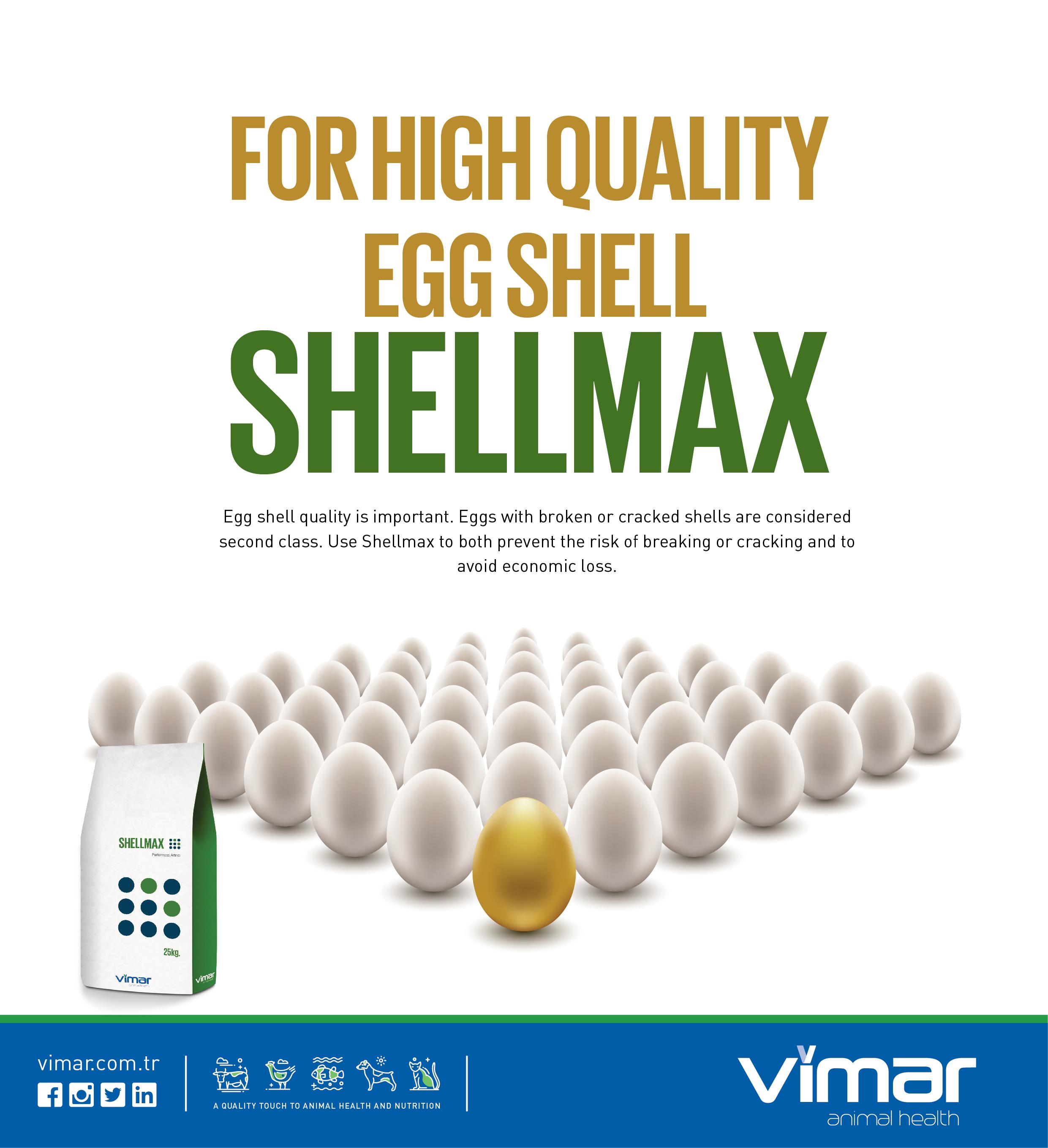 Shellmax
