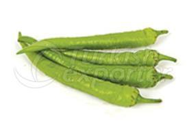 فلفل أخضر